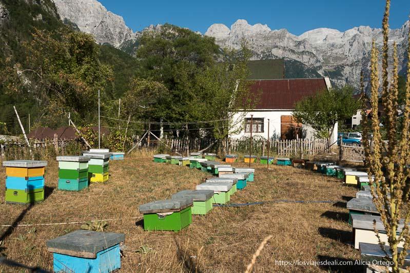 colmenas pintadas de colores verde y azul y una casa en el valle de theth
