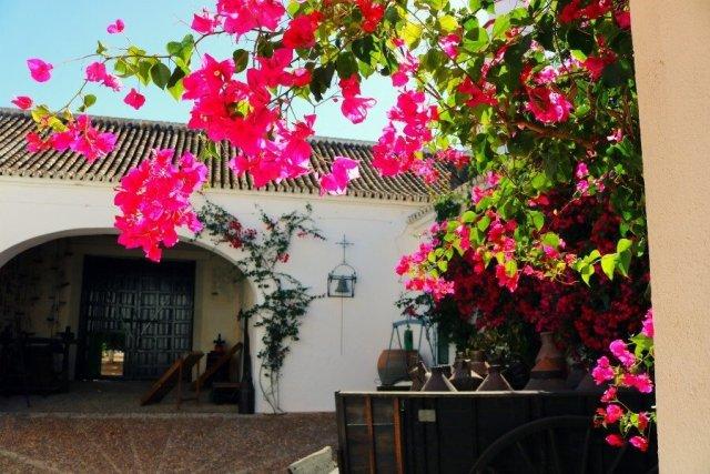 Patio de las buganvillas en la Hacienda Guzmán de Sevilla