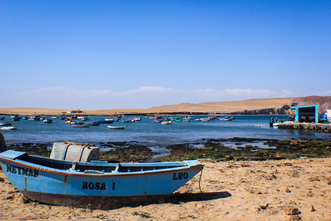 Reserva de Paracas | Que ver en Paracas