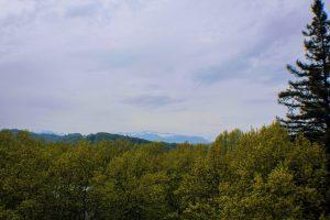 Los Pirineos Atlánticos desde PAU - Que ver en Pau