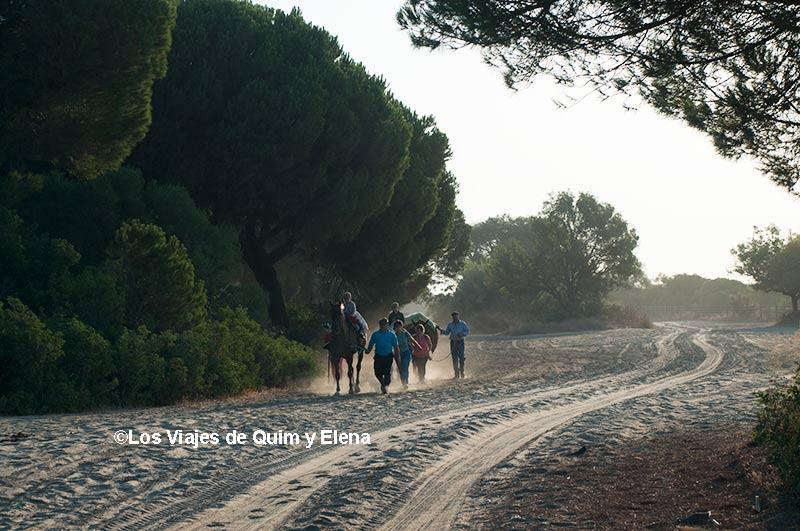 Por el camino en Doñana