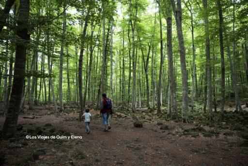 Éric y Quim por el bosque de la Fageda D'En Jordà