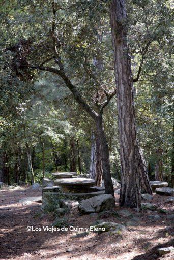 Zona de picnic junto a la Casa Forestal