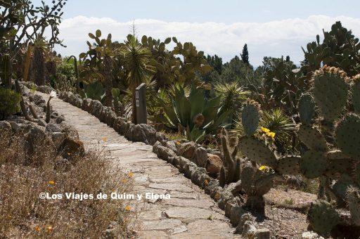 Camino en Pinya de Rosa