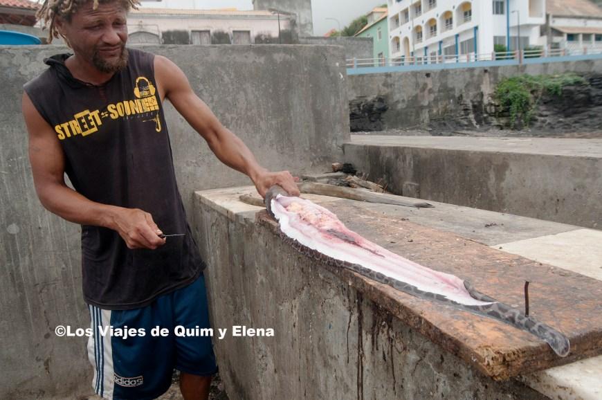 Limpiando el pescado en el puerto