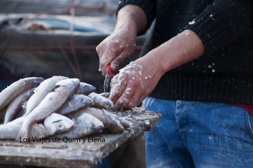 Preparando el pescado para la venta