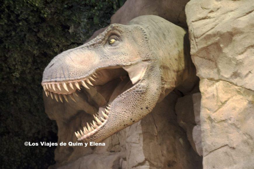 Tyrannosaurus Rex en Dinopolis