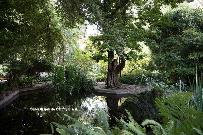 Vegetación desbordante en los Jardines de la UB