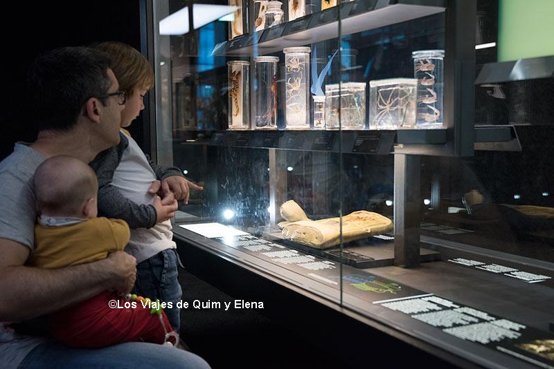 Álex, Éric y Quim en el Museu Blau