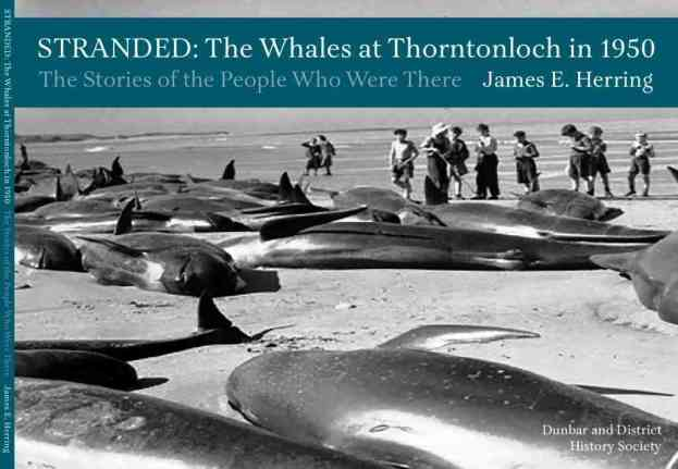 STRANDED: The Whales at Thorntonloch in 1950
