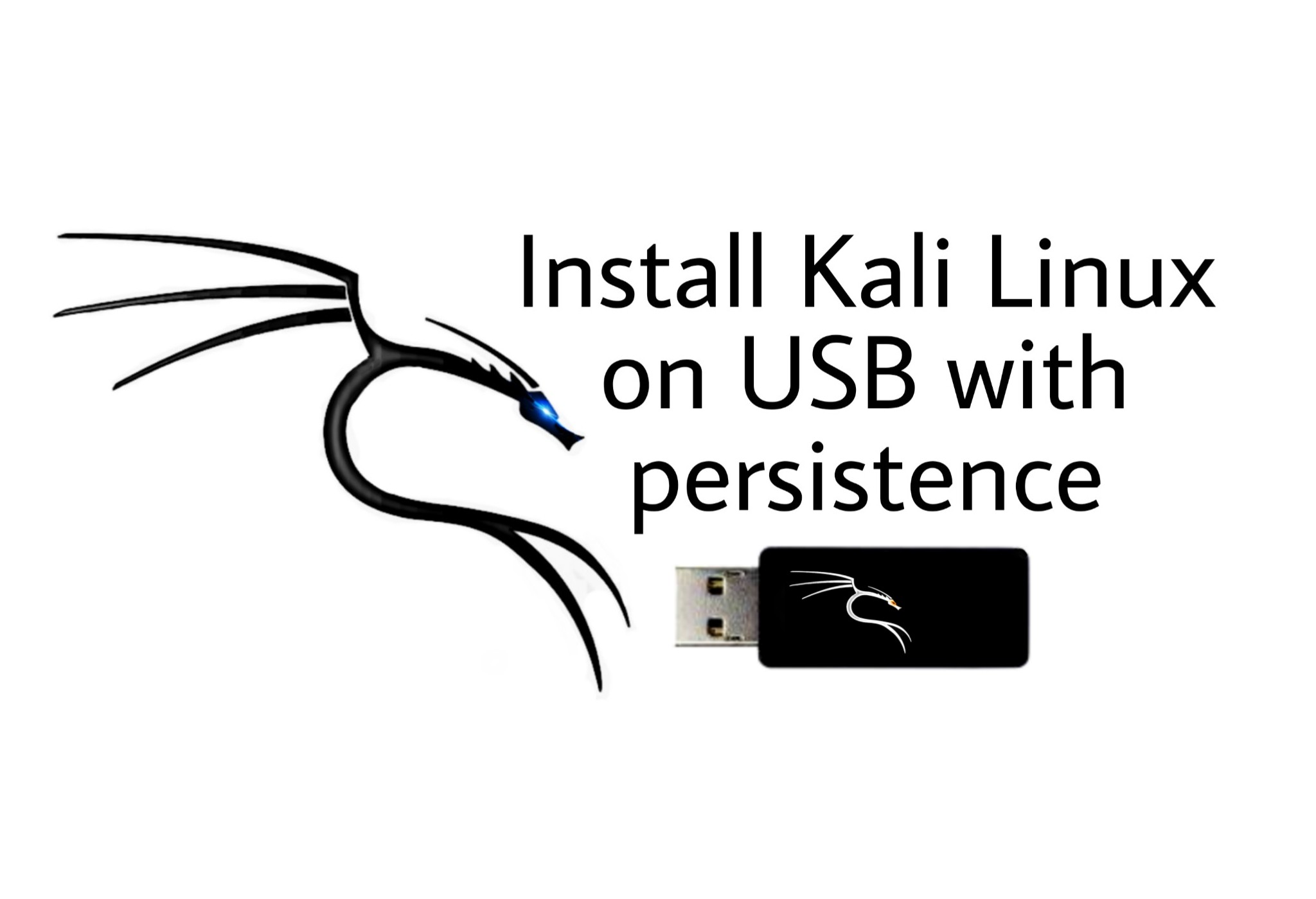 install kali linux on usb with persistence