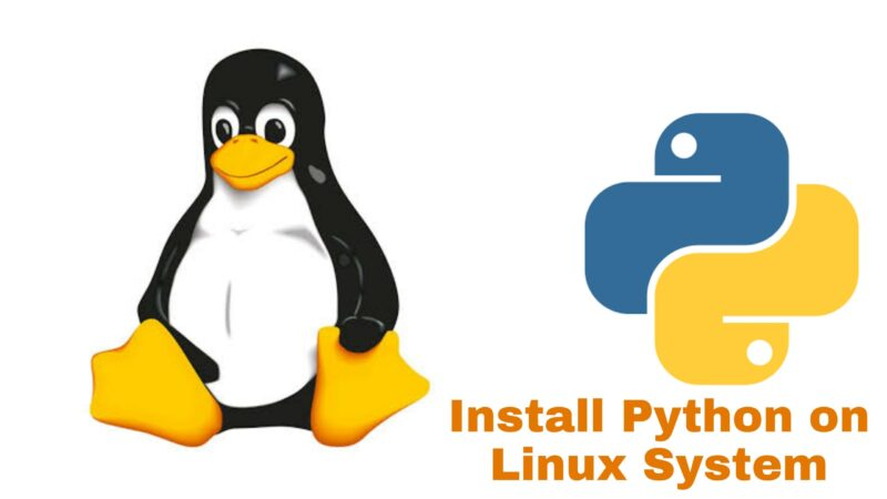 Install Python on Linux System
