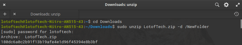 Unzip a zip file in a different directory