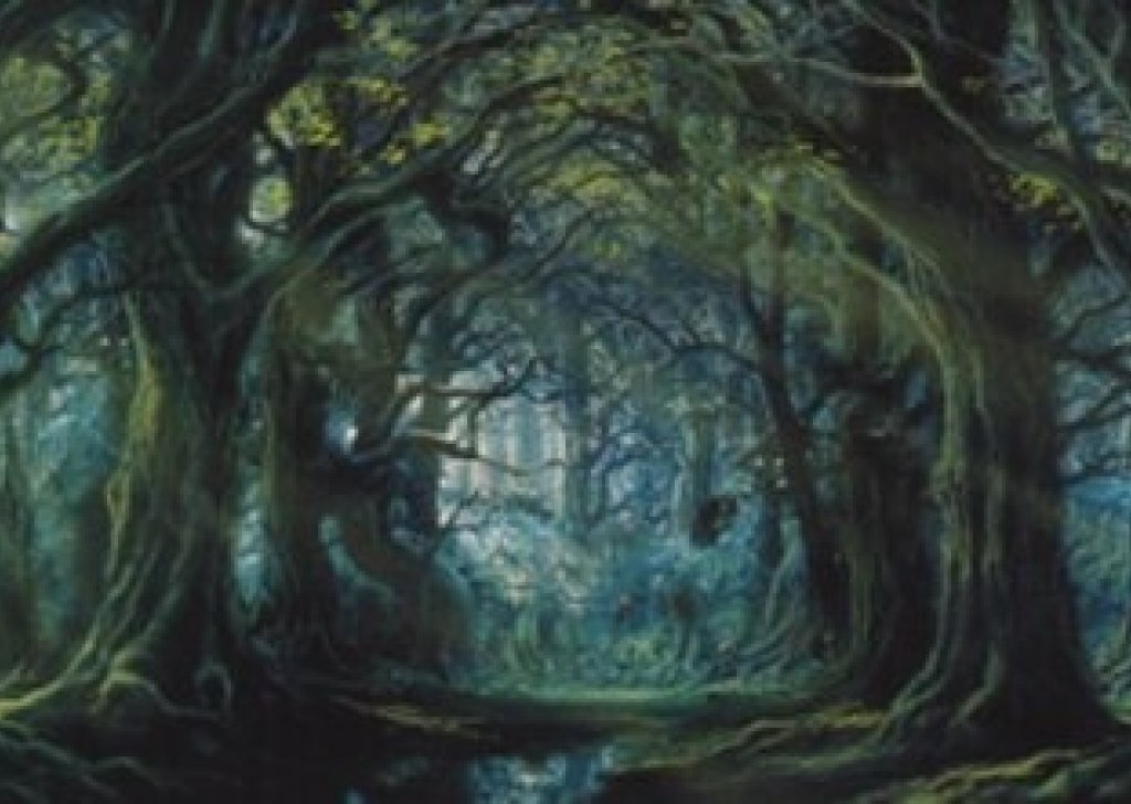 Star Wars Animated Wallpaper Treebeard S Wellinghall Audio Atmosphere