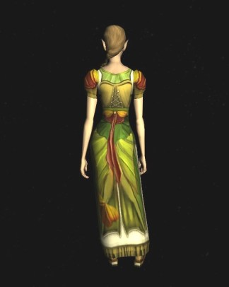 Short-sleeved Dress of the Moth - back
