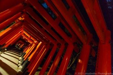 A Taste of Japan: Old Meets New