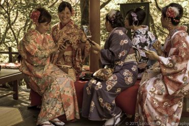 A Taste of Japan: Nighttime Shrines