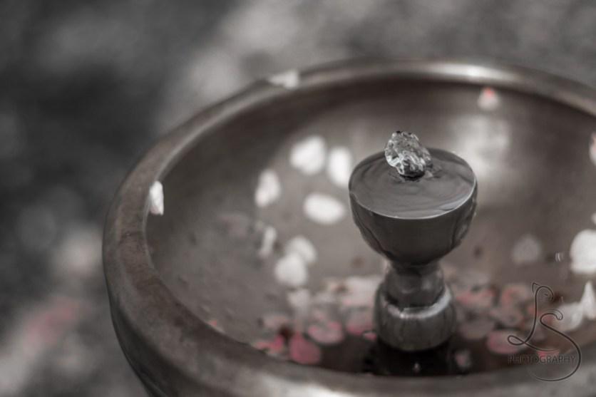 Sakura Fountain