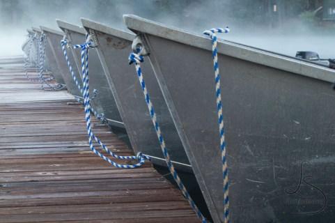 Misty Boats