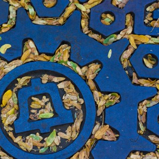 Leaves painting a manhole