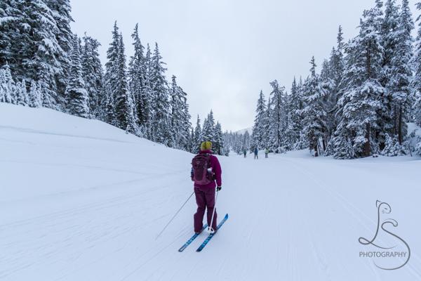 ski-trail-1
