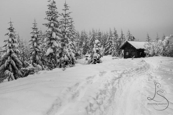 ski-trail-9