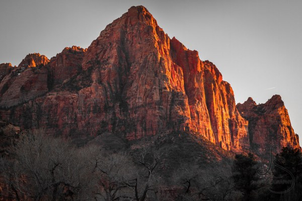Weekly Wow: Zion's Watchman | LotsaSmiles Photography | Every photographer takes the same picture of Zion's famous Watchman landmark.  Click to see a different point of view!
