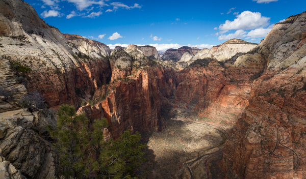 The Zion valley floor from atop the Angels Landing hike with the canyon walls dappled in spotty sunlight