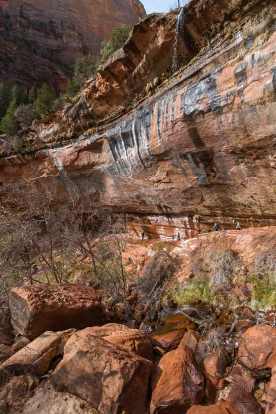 Trickling waterfalls falling from the middle to the lower of Zion's Emerald Pools