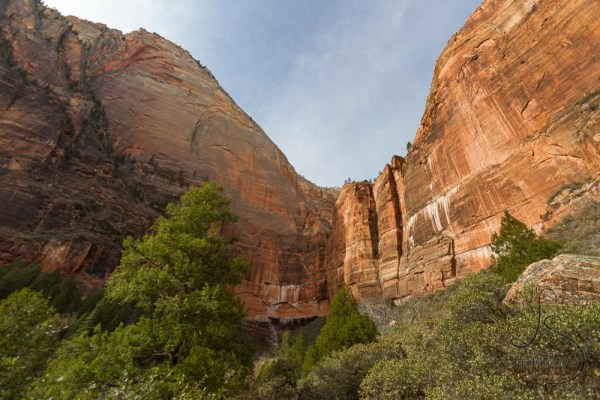 The cliff wall behind the upper emerald pool in Zion National Park