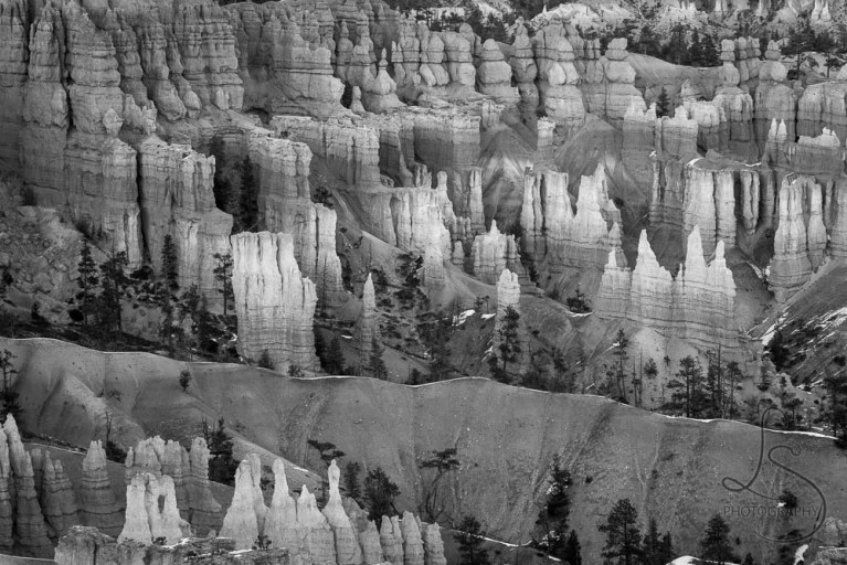 Black and white image of Bryce Canyon's multi-facetted hoodoos | LotsaSmiles Photography