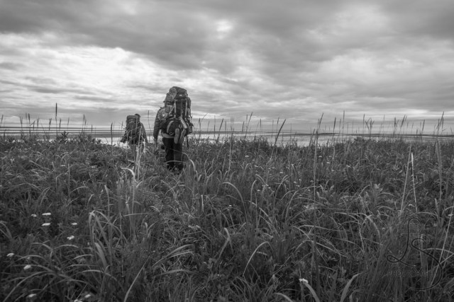 Two backpackers hiking through the sedge grass toward the beach, in monochrome | LotsaSmiles Photography