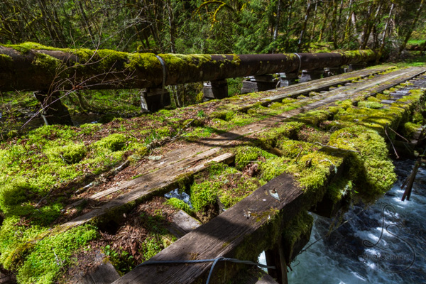 Mossy remains of an old bridge | LotsaSmiles Photography