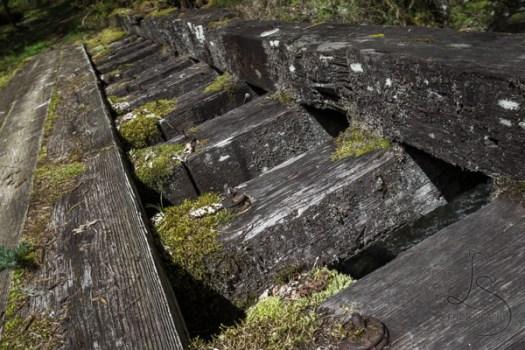 oregon-hiking-15