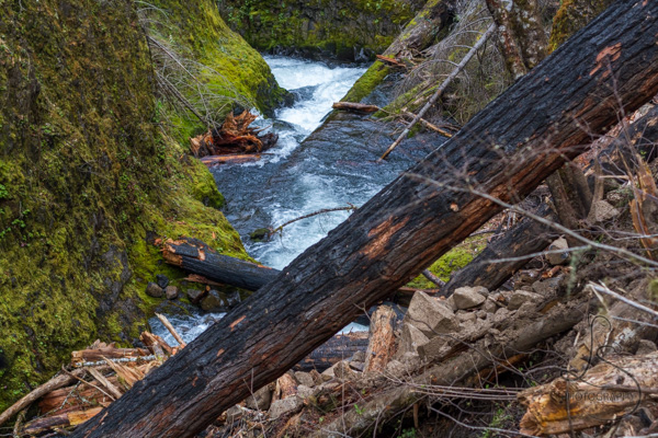 A landslide spilling into a river lined with mossy banks | LotsaSmiles Photography