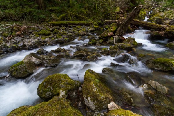 Rocky creek | LotsaSmiles Photography
