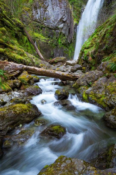 Tall waterfall flowing under a log in silky smoothness | LotsaSmiles Photography