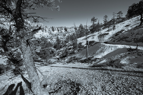 The valley of Bryce Canyon, in monochrome | LotsaSmiles Photography