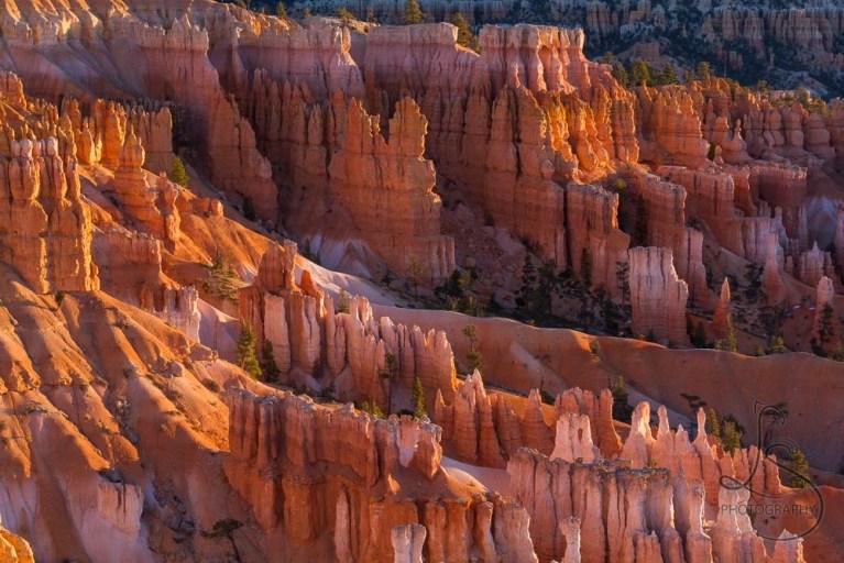Bryce Canyon hoodoos at sunrise | LotsaSmiles Photography