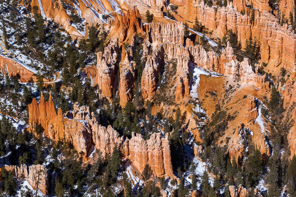 A view of the hoodoos surrounded by trees from above | LotsaSmiles Photography