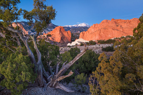 Garden of the Gods's famous Kissing Camels rock formation, with Pikes Peak in the background | LotsaSmiles Photography