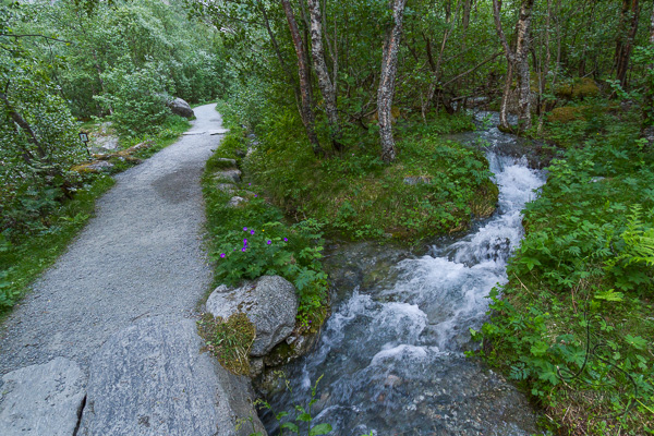 A creek and the trail to Kjenndalen intersect | LotsaSmiles Photography