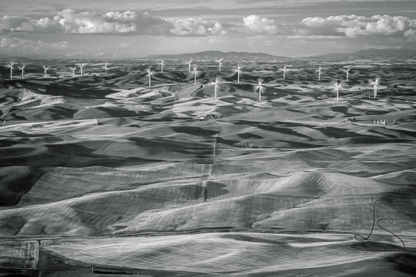 Wind turbines on the rolling hills of Washington's Palouse region | LotsaSmiles Photography