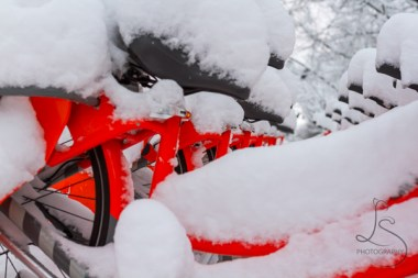 Rental bikes in Portland don't see much use when buried in a rare snowfall.