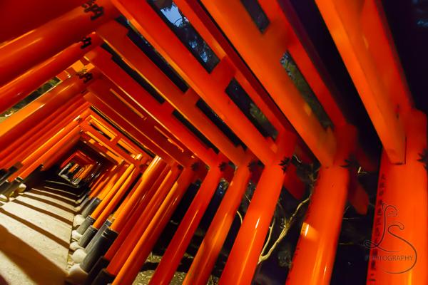 Orange torii at an angle at Fushimi Inari Shrine in Kyoto | LotsaSmiles Photography