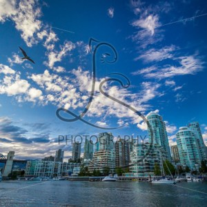 Vancouver Flight - LotsaSmiles Photography