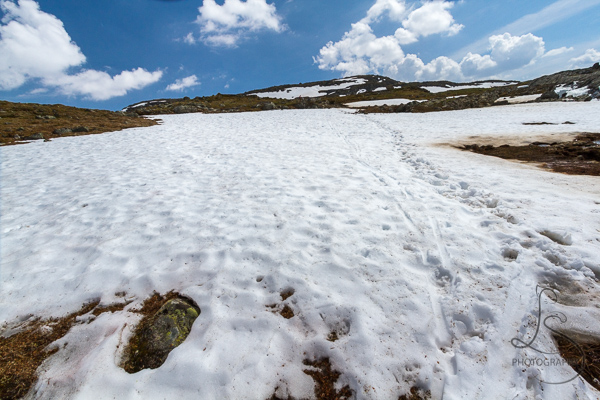 The trail cutting across a snowfield in Krossbu | LotsaSmiles Photography