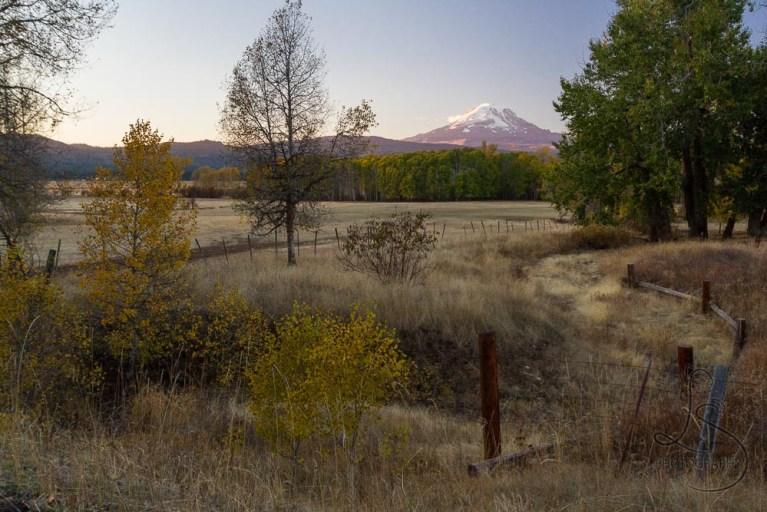 A farm field, overseen by Mount Adams | LotsaSmiles Photography
