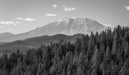 Mount St. Helens poking over the forest, in monochrome | LotsaSmiles Photography