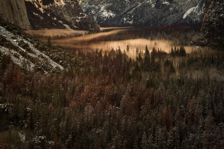 Evening mist in a wintery Yosemite Valley   LotsaSmiles Photography